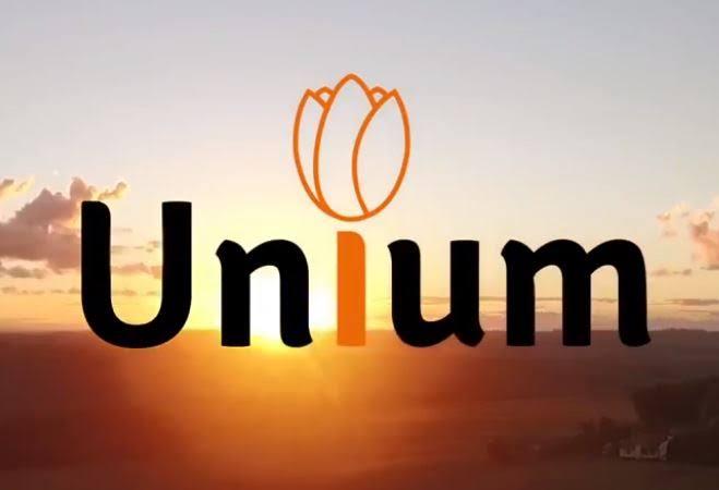 show unium 03 02 2019