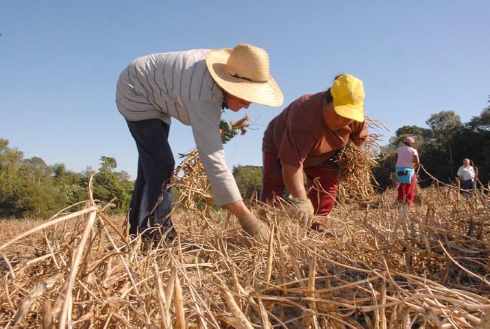 agricultura familiar destaque 11 03 2020