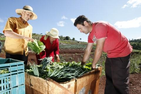 agricultura familiar 29 06 2020