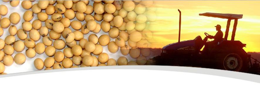 agrosafra 10 12 2012