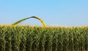 seguro agricola 30 11 2012