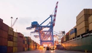 exportacoes 12 03 2014