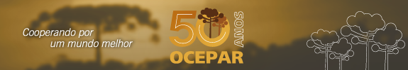 Banner 50 anos